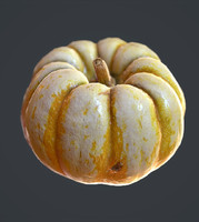 Pumpkin 3D Scan