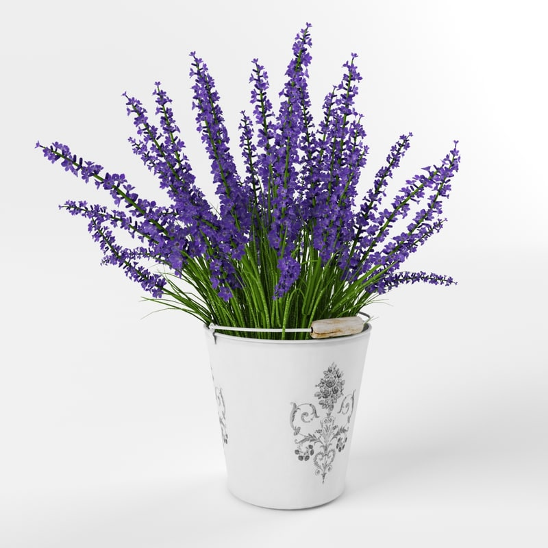 bouquet purple lavender max