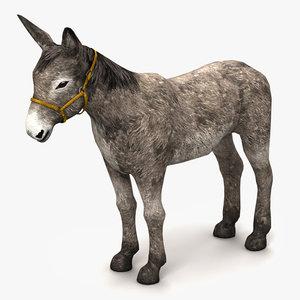 3dsmax donkey