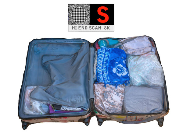 luggage scan 8k 3d model