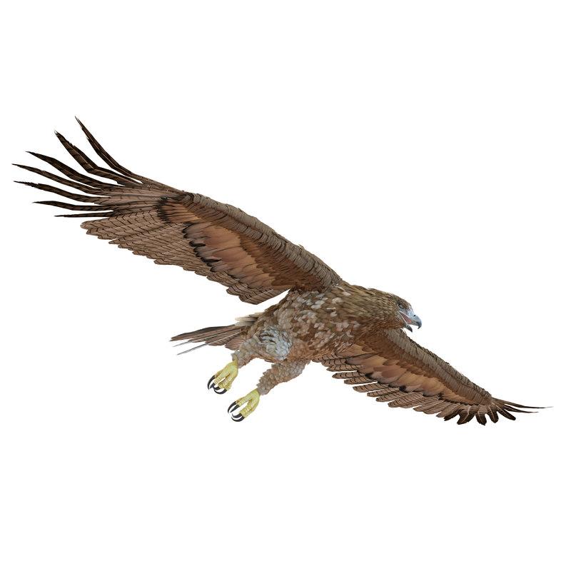 gurney eagle pose 7 3d max