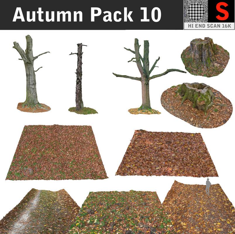 maya autumn pack 10