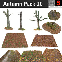 maya autumn pack 10