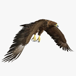 obj golden eagle pose 4
