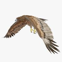 3ds gurney s eagle