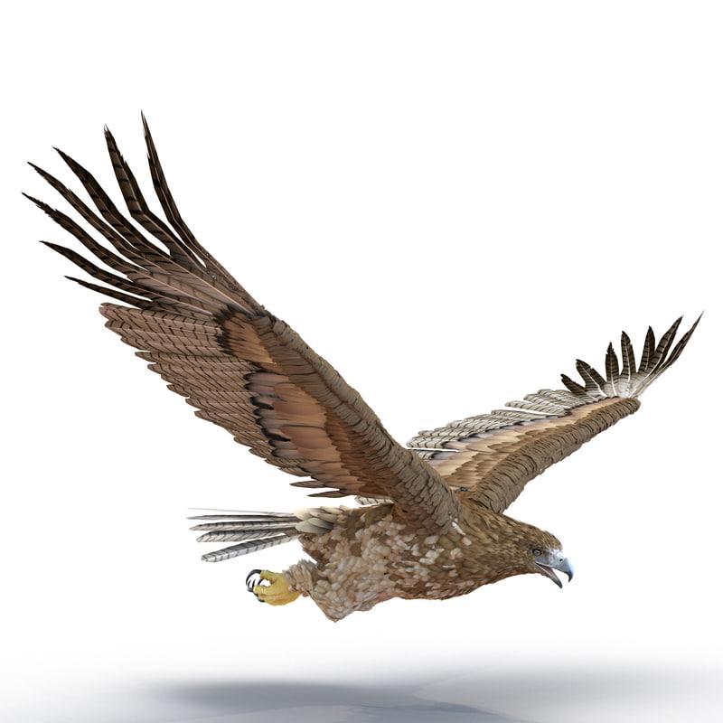 gurney eagle pose 6 3d model