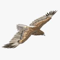 3d 3ds gurney eagle pose 3