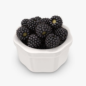 3ds realistic blackberry plate