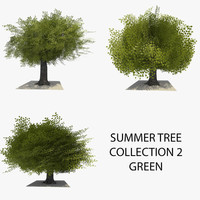3d model 3 trees summer version