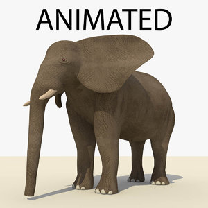 brown elephant animations 3d model