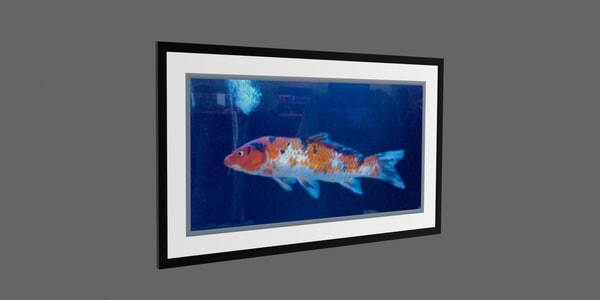 3d photo frame fish model