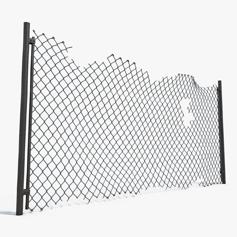 3d model damage netting