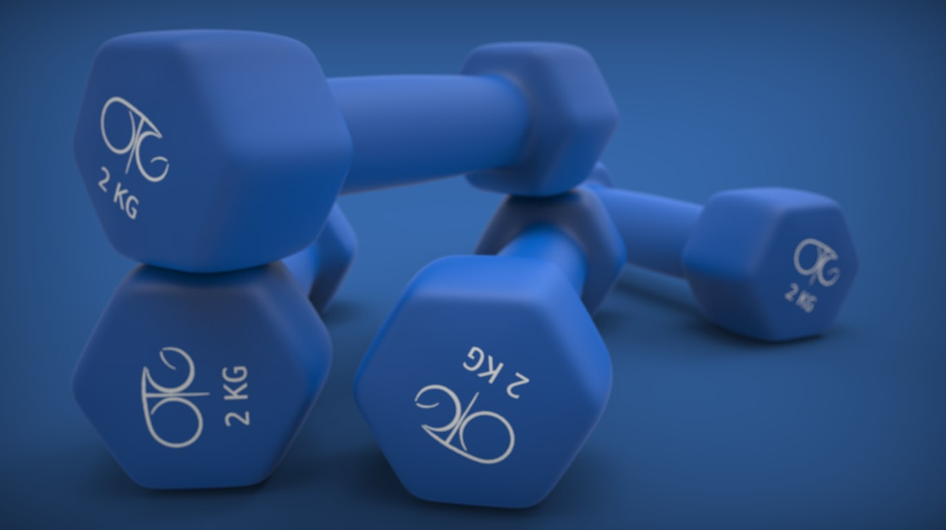 dumbbells weights 3d 3ds