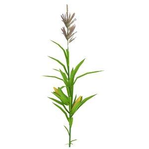 low-poly corn stalk 3d model