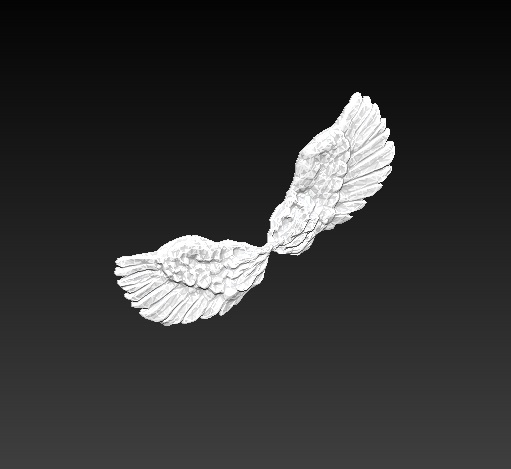 wings pair 3d obj
