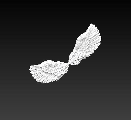 wings pair 3d obj