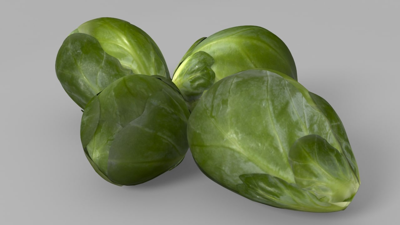 brussels sprouts 3d model