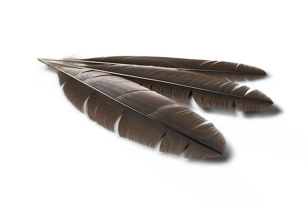 cinema4d feather