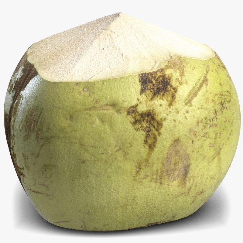 3d green coconut 4 model