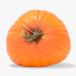 orange halloween pumpkin 3d max