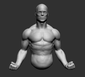 3d model male upper body
