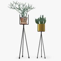 3d model shelf plants