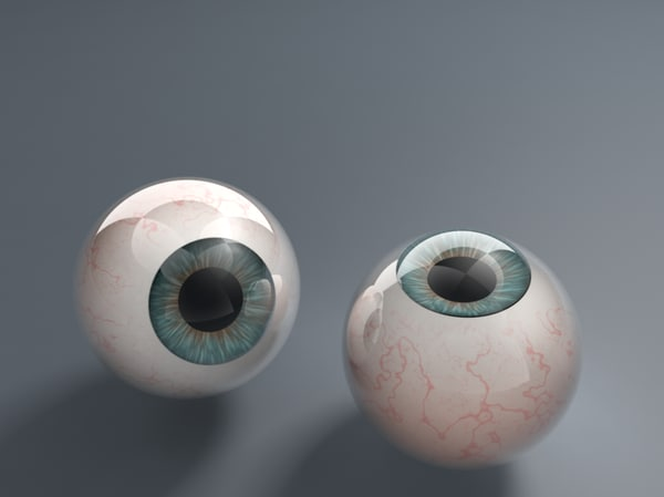 3d eye eyeball model
