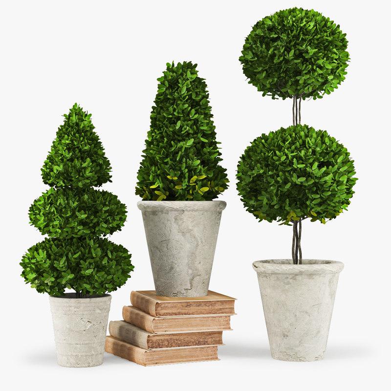 max plant decorative accents trees