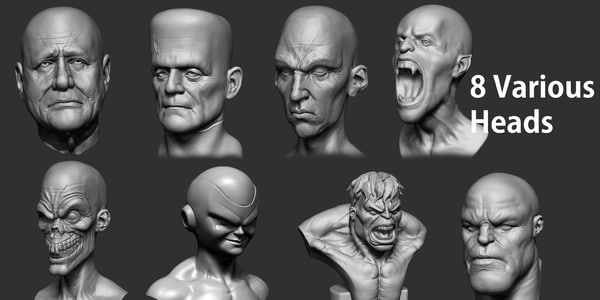3d various heads model