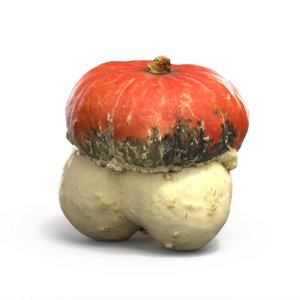 3d model turk cap pumpkin
