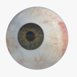 max realistic human eye iris