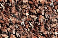 Bark mulch 1