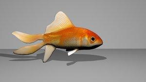 3d model of goldfish fish