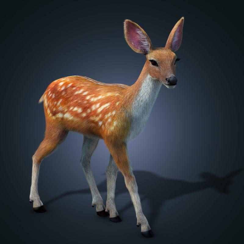 fur animation deer 3d model