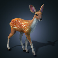 fur animation deer 3d model