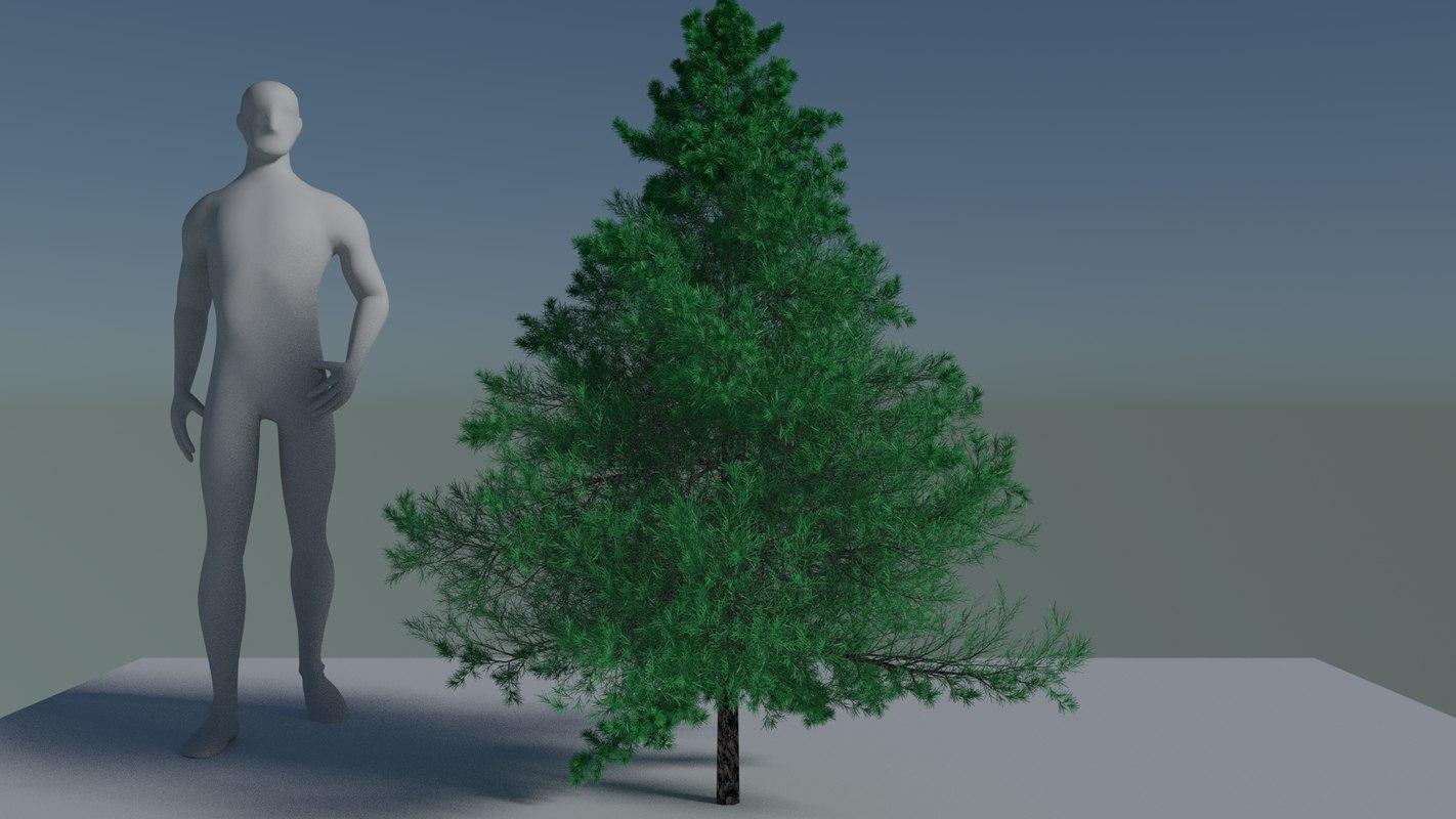 fit-tree 3d model