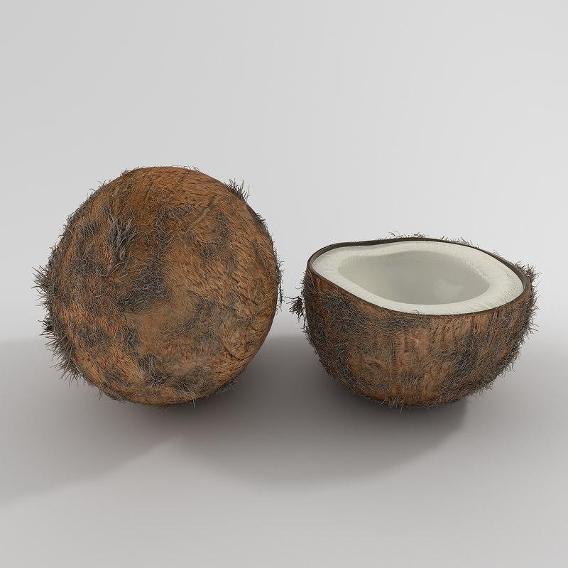 3d model realistic coconut