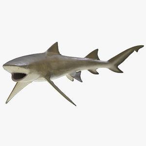 sicklefin lemon shark rigged max