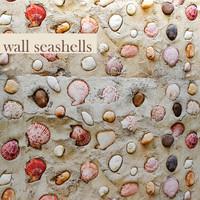wall seashells 3d model
