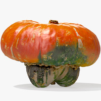 3d orange turban squash pumpkin model