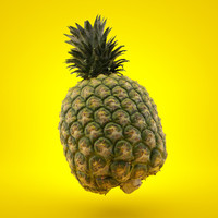 Real Pineapple 3D Scan