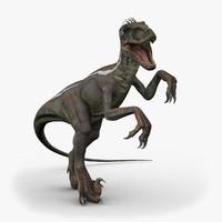 velociraptor rigged 1 ma
