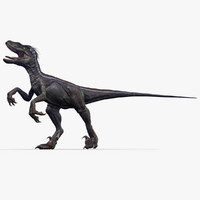 velociraptor 1 animation 3d model
