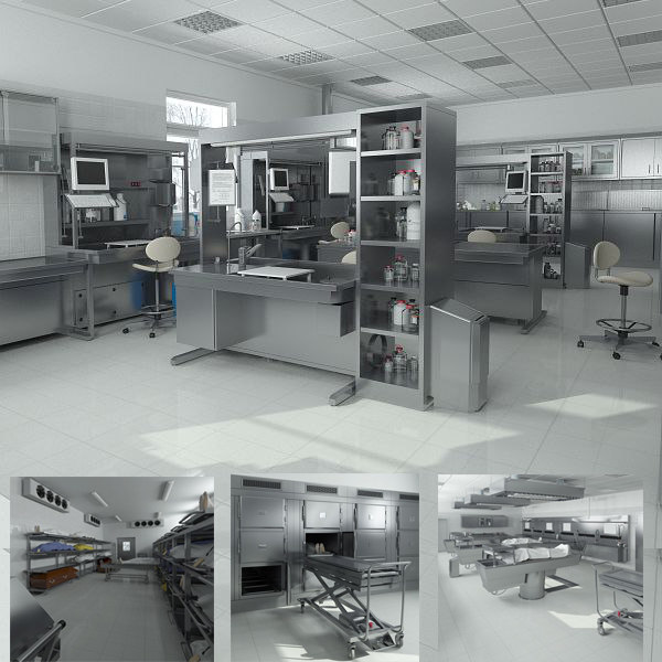 big hd anatomy laboratory equipment 3d model