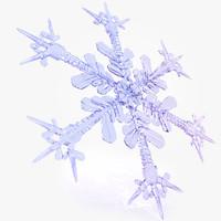 snowflake 3d model D