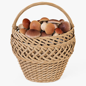 max wicker basket 01 mushrooms