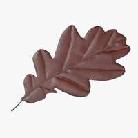 brown oak leaf max
