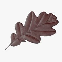 red oak leaf obj