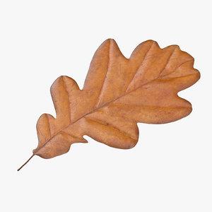 yellow oak leaf 3d model