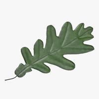 Oak Leaf 03 Green